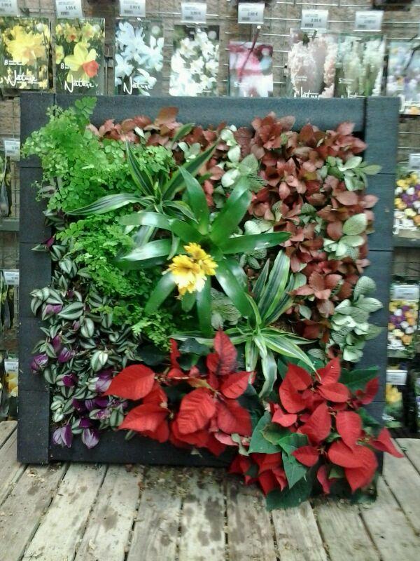 Subasta de jardines verticales mercado de navidad sunday for Jardin vertical verdecora